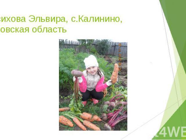 Насихова Эльвира, с.Калинино, Кировская область