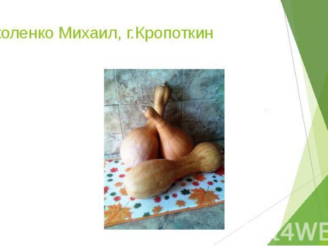 Николенко Михаил, г.Кропоткин