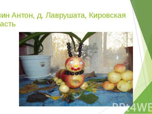 Нопин Антон, д. Лаврушата, Кировская область