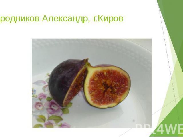 Огородников Александр, г.Киров