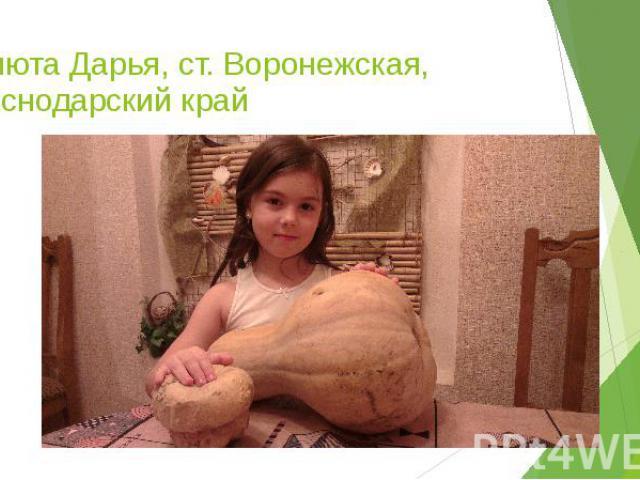 Панюта Дарья, ст. Воронежская, Краснодарский край