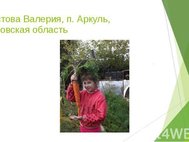 Пестова Валерия, п. Аркуль, Кировская область
