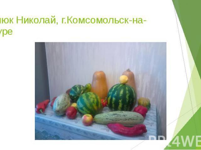 Билюк Николай, г.Комсомольск-на-Амуре