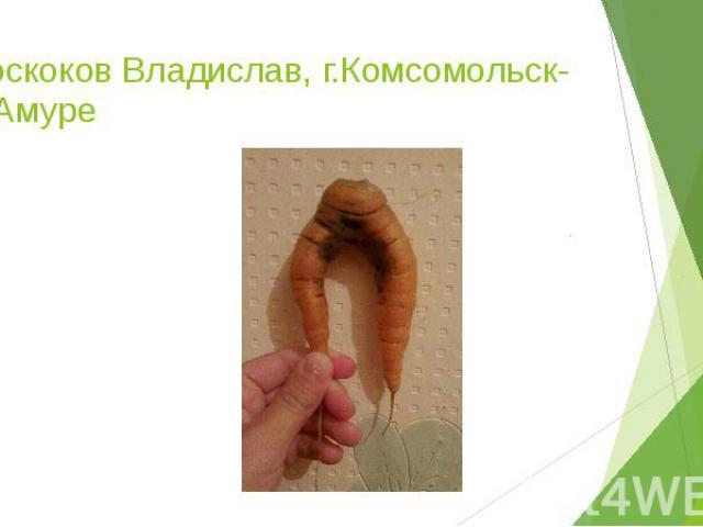 Проскоков Владислав, г.Комсомольск-на-Амуре