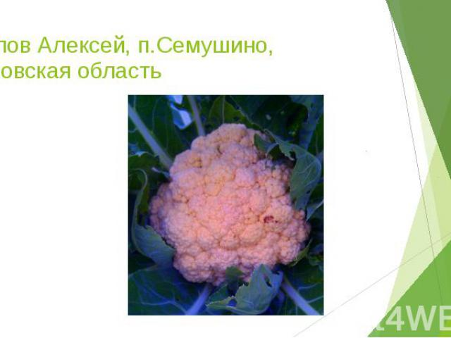Рылов Алексей, п.Семушино, Кировская область