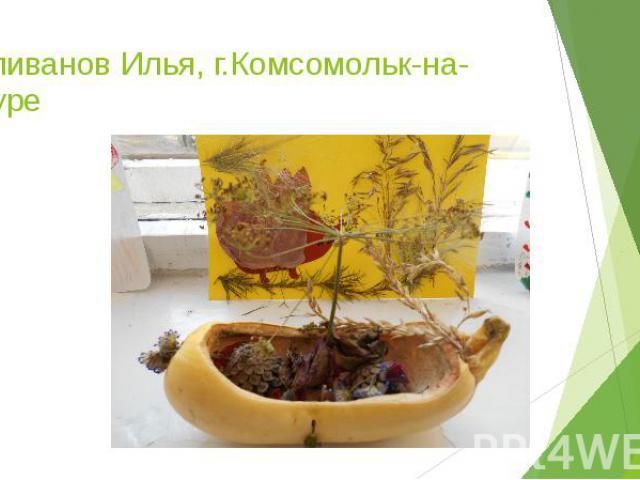 Силиванов Илья, г.Комсомольк-на-Амуре
