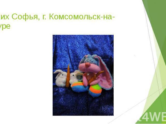 Сухих Софья, г. Комсомольск-на-Амуре