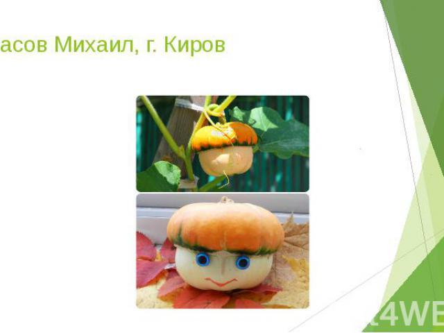 Тарасов Михаил, г. Киров