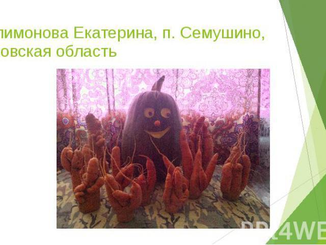 Филимонова Екатерина, п. Семушино, Кировская область
