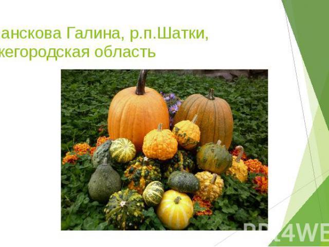 Хованскова Галина, р.п.Шатки, Нижегородская область