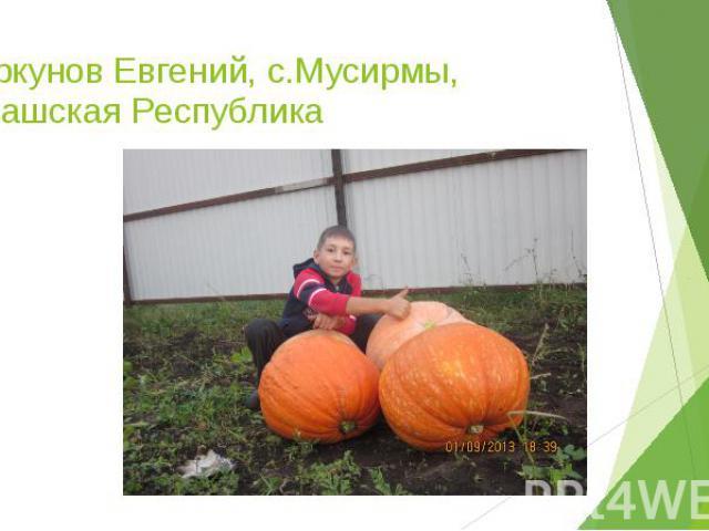 Цыркунов Евгений, с.Мусирмы, Чувашская Республика