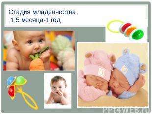 Стадия младенчества 1,5 месяца-1 год