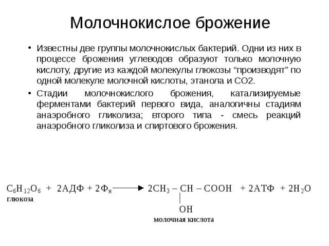 """Молочнокислое брожение Известны две группы молочнокислых бактерий. Одни из них в процессе брожения углеводов образуют только молочную кислоту, другие из каждой молекулы глюкозы """"производят"""" по одной молекуле молочной кислоты, этанола и СО2. Стадии м…"""
