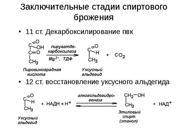 Заключительные стадии спиртового брожения 11 ст. Декарбоксилирование пвк 12 ст. восстановление уксусного альдегида