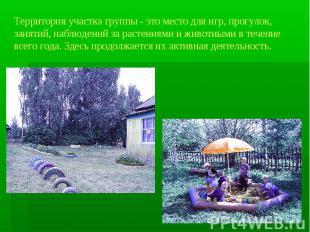 Территория участка группы - это место для игр, прогулок, занятий, наблюдений за