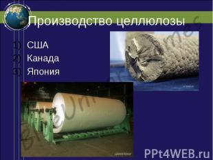 Производство целлюлозы США Канада Япония