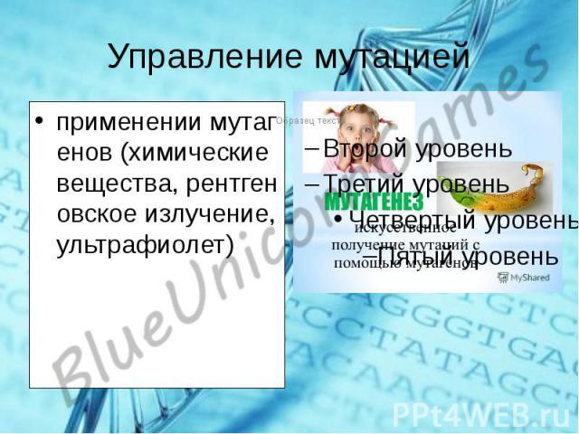Текст к презентации http://rlu.ru/022DHn