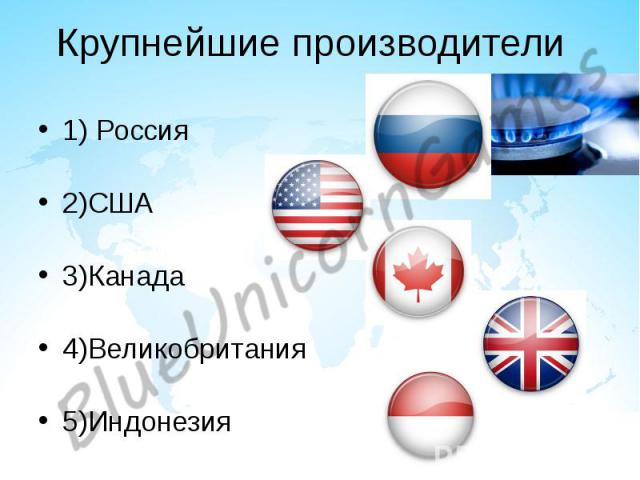 Крупнейшие производители 1) Россия 2)США 3)Канада 4)Великобритания 5)Индонезия
