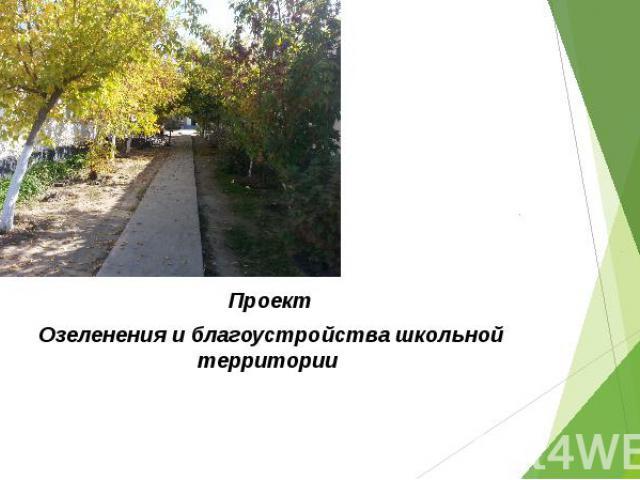 Проект Озеленения и благоустройства школьной территории