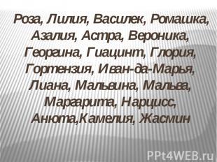 Роза, Лилия, Василек, Ромашка, Азалия, Астра, Вероника, Георгина, Гиацинт, Глори