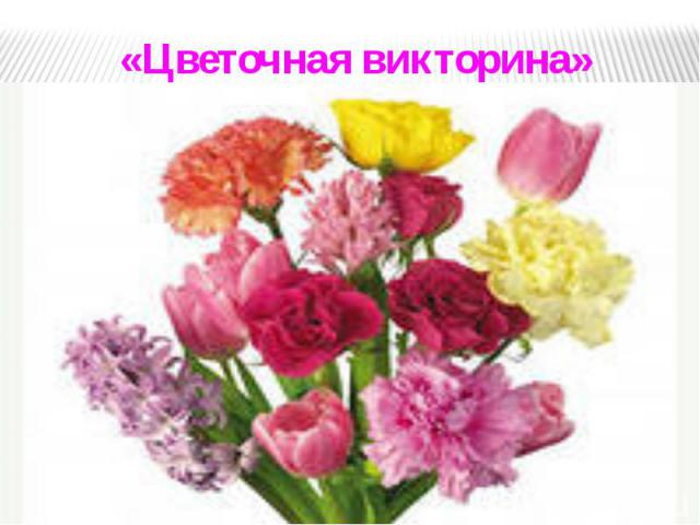 «Цветочная викторина» «Цветочная викторина»