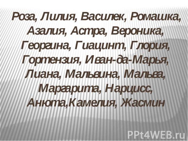 Роза, Лилия, Василек, Ромашка, Азалия, Астра, Вероника, Георгина, Гиацинт, Глория, Гортензия, Иван-да-Марья, Лиана, Мальвина, Мальва, Маргарита, Нарцисс, Анюта,Камелия, Жасмин Роза, Лилия, Василек, Ромашка, Азалия, Астра, Вероника, Георгина, Гиацинт…