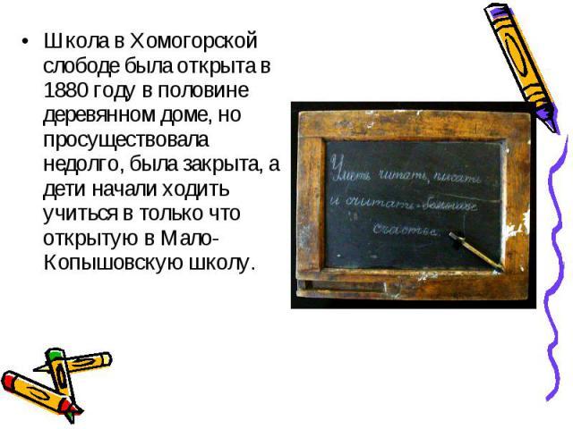 Школа в Хомогорской слободе была открыта в 1880 году в половине деревянном доме, но просуществовала недолго, была закрыта, а дети начали ходить учиться в только что открытую в Мало-Копышовскую школу. Школа в Хомогорской слободе была открыта в 1880 г…