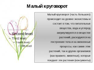 Малый круговорот Малый круговорот (часть большого) происходит на уровне экосисте