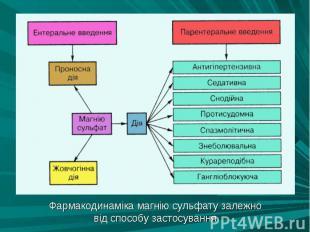 Фармакодинаміка магнію сульфату залежно Фармакодинаміка магнію сульфату залежно