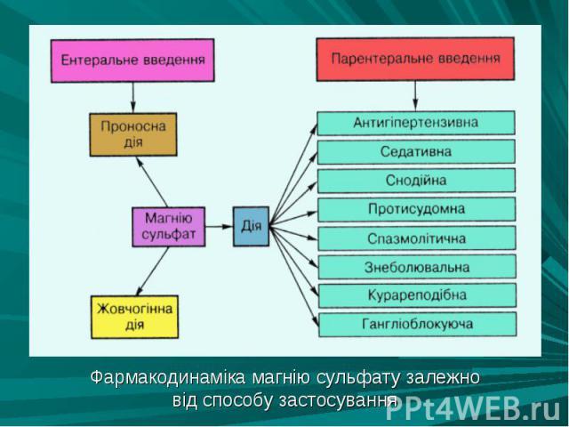 Фармакодинаміка магнію сульфату залежно Фармакодинаміка магнію сульфату залежно від способу застосування