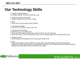 Our Technology Skills