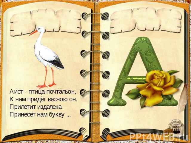 Аист- птица-почтальон,К нам придёт весною он.Прилетит издалека,Принесёт нам букву ...