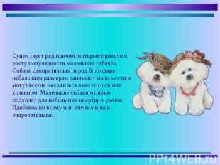 Существует ряд причин, которые привели к росту популярности маленьких собачек. С