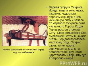 Верная супруга Осириса, Исида, нашла тело мужа, извлекла чудесным образом скрыту