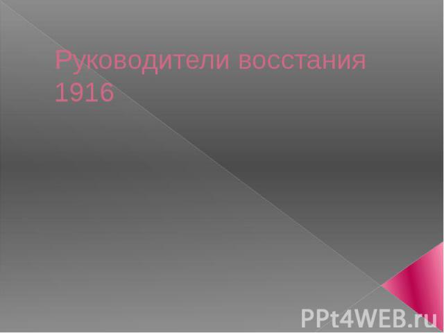 Руководители восстания 1916