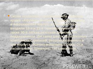 Силам союзников противостояла танковая армия «Африка» генерала Эрвина Роммеля, и
