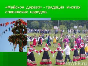 «Майское дерево» - традиция многих славянских народов