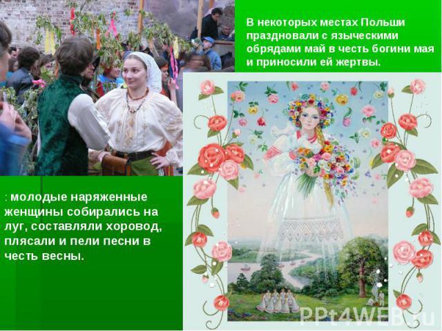 В некоторых местах Польши праздновали с языческими обрядами май в честь богини мая и приносили ейжертвы. : молодые наряженные женщины собирались на луг, составляли хоровод, плясали и пели песни в честь весны.