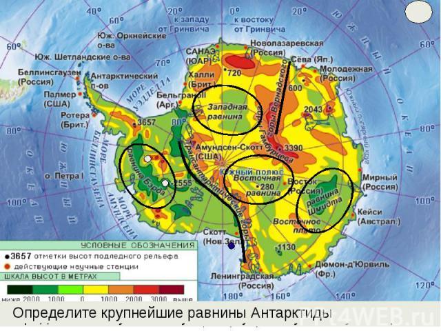 Определите крупнейшие равнины Антарктиды