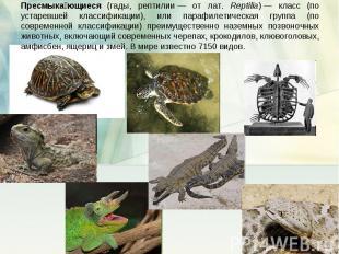 Пресмыкающиеся (гады, рептилии— от лат. Reptilia)— класс (по устаревшей класси