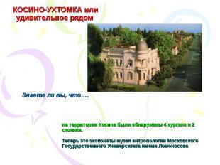 КОСИНО-УХТОМКА или удивительное рядом на территории Косина были обнаружены 4 кур