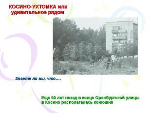 КОСИНО-УХТОМКА или удивительное рядом Еще 50 лет назад в конце Оренбургской улиц