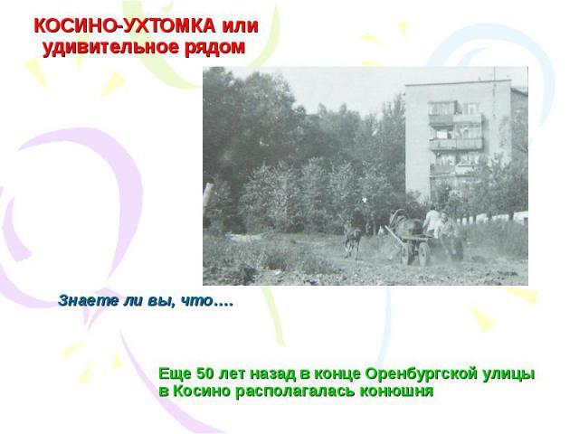 КОСИНО-УХТОМКА или удивительное рядом Еще 50 лет назад в конце Оренбургской улицы в Косино располагалась конюшняЗнаете ли вы, что….
