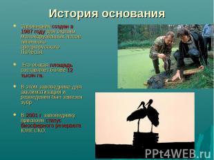 История основания Заповедник создан в 1987 году для охраны малонарушенных лесов