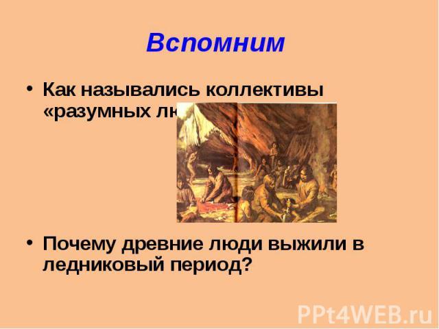 Вспомним Как назывались коллективы «разумных людей»?Почему древние люди выжили в ледниковый период?