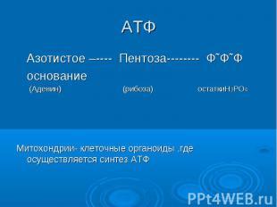 АТФ Азотистое –---- Пентоза-------- Ф˜Ф˜Ф основание (Аденин) (рибоза) остаткиH3P