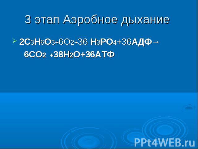 3 этап Аэробное дыхание 2C3H6O3+6О2+36 H3PO4+36АДФ→ 6СО2 +38Н2О+36АТФ