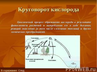 Круговорот кислорода Циклический процесс образования кислорода в результате фото