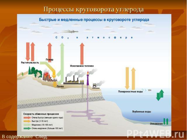 Процессы круговорота углерода