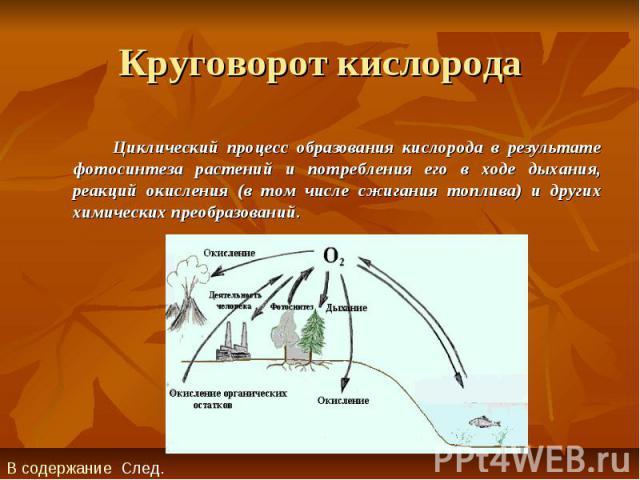 Круговорот кислорода Циклический процесс образования кислорода в результате фотосинтеза растений и потребления его в ходе дыхания, реакций окисления (в том числе сжигания топлива) и других химических преобразований.